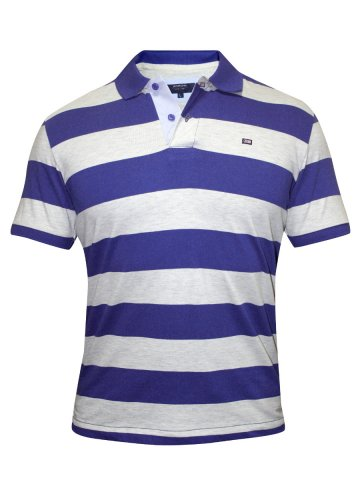 https://static9.cilory.com/138634-thickbox_default/arrow-blue-stripes-polo-tshirt.jpg