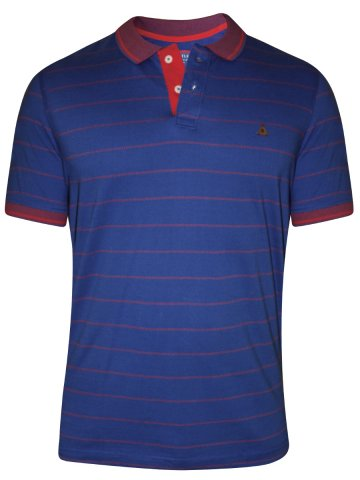 https://static3.cilory.com/176791-thickbox_default/turtle-blue-polo-stripes-t-shirt.jpg