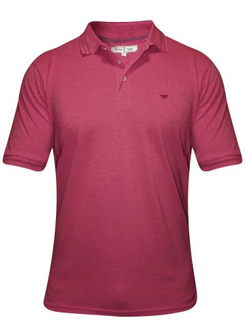https://static3.cilory.com/181877-thickbox_default/red-tape-coral-red-polo-t-shirt.jpg