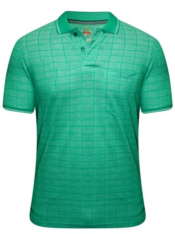 https://static4.cilory.com/191383-thickbox_default/monte-carlo-cd-green-polo-t-shirt.jpg