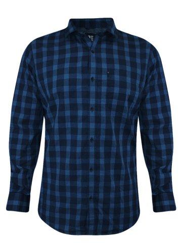 https://static1.cilory.com/195055-thickbox_default/peter-england-blue-casual-checks-shirt.jpg