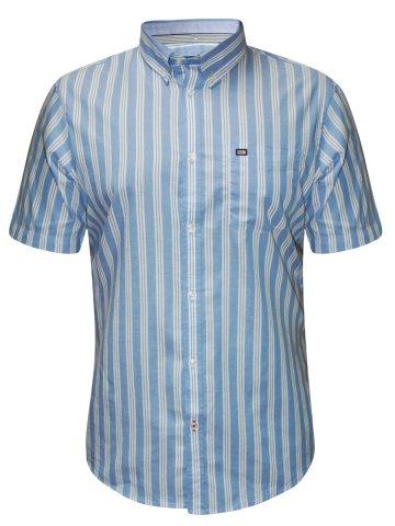 https://static.cilory.com/208823-thickbox_default/arrow-light-blue-half-sleeves-formal-shirt.jpg
