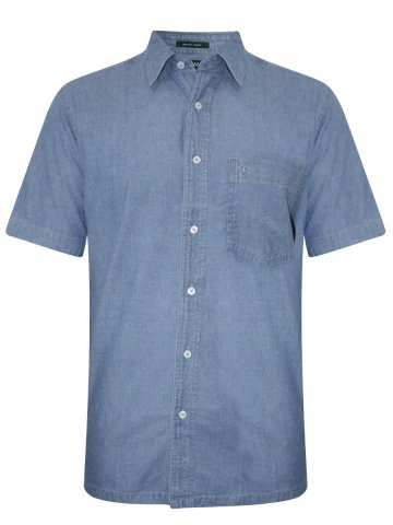 ColorPlus Light Blue Half Sleeves Shirt at cilory