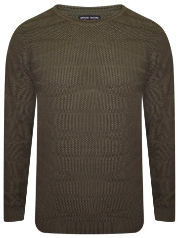 https://static6.cilory.com/275632-thickbox_default/spykar-olive-round-neck-sweater.jpg