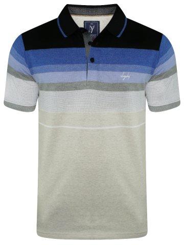 https://static6.cilory.com/401257-thickbox_default/slingshot-stripes-polo-t-shirt.jpg