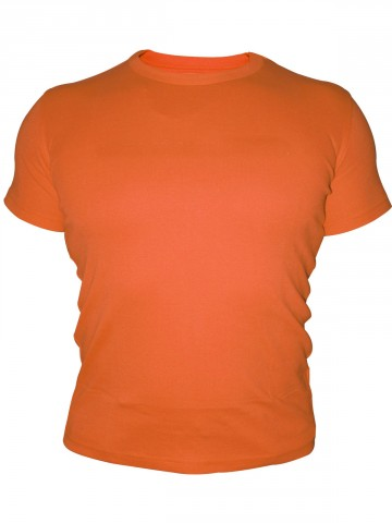 https://d38jde2cfwaolo.cloudfront.net/41992-thickbox_default/tsx-plain-round-neck-t-shirt.jpg