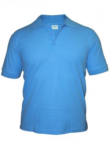 https://static7.cilory.com/43032-thickbox_default/tsx-men-sky-blue-polo-t-shirt.jpg