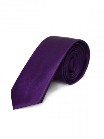 https://static.cilory.com/77885-thickbox_default/plain-polysilk-tie.jpg