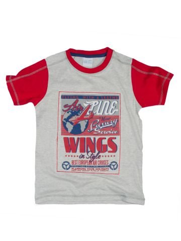 https://static7.cilory.com/99630-thickbox_default/fs-mini-klub-boys-wings-in-style-t-shirt.jpg